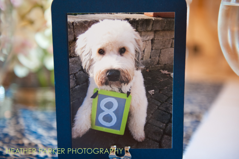 photo frame table numbers