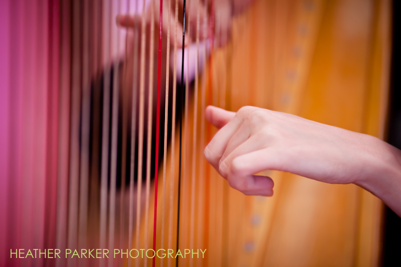 harpist for wedding ceremony and cocktail hour
